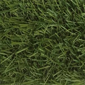 GR-021(1)