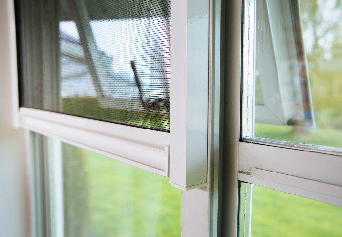 Window Screen4